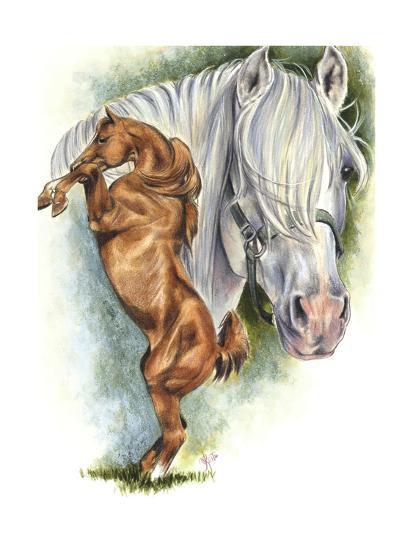 Andalusian - Spanish Mustang-Barbara Keith-Giclee Print