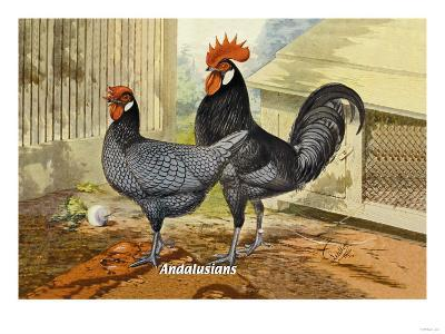Andalusians--Art Print