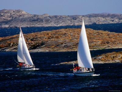 Sailboats Cruising in Bohuslan Archipelago, Mollosund, Vaster-Gotaland, Sweden