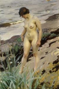 Sandhamn Study, 1914 by Anders Leonard Zorn