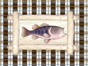 Framed Lake Fish I by Andi Metz