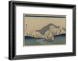 A Grove of Cherry Trees (Sakura Namiki Zu) by Ando Hiroshige
