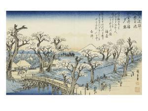 Coucher du soleil sur Koganei by Ando Hiroshige
