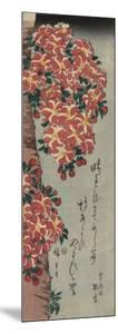 Double Cherry in Flower by Ando Hiroshige