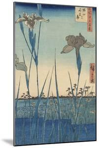 Irises at Horikiri by Ando Hiroshige