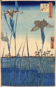 Japan: Iris Garden, 1857 by Ando Hiroshige