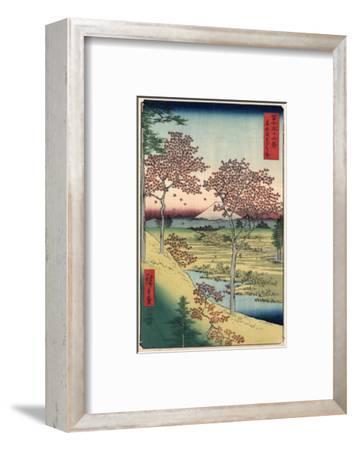 Japan: Maple Trees, 1858