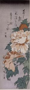 Pivoines by Ando Hiroshige