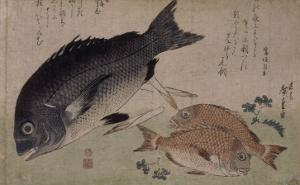Poissons by Ando Hiroshige