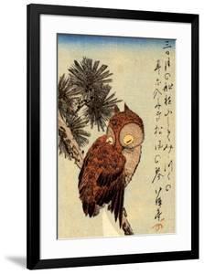 Utagawa Hiroshige Small Brown Owl on a Pine Branch by Ando Hiroshige