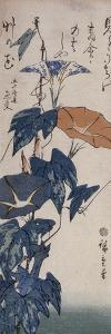 Volubilis by Ando Hiroshige