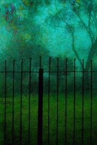 Fence by Andr? Burian