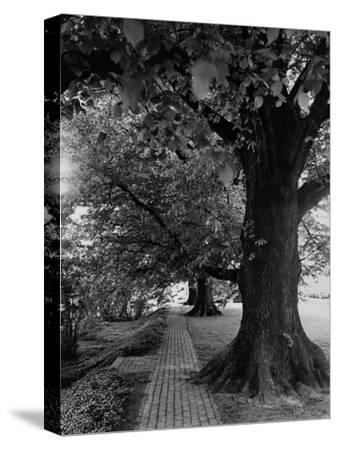 House & Garden - July 1948