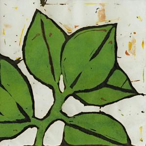 Planta Green III by Andrea Davis