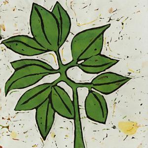 Planta Green IX by Andrea Davis