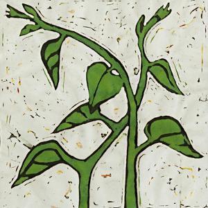Planta Green V by Andrea Davis
