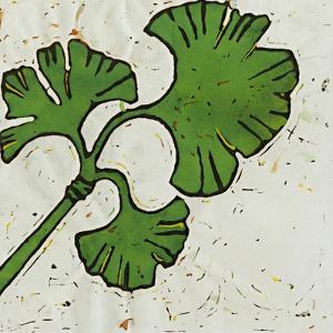 Planta Green VI by Andrea Davis