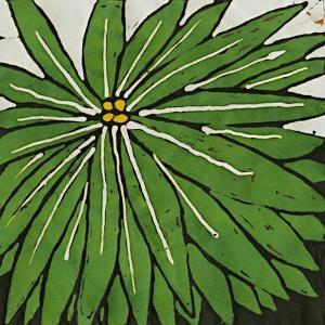 Planta Green VIII by Andrea Davis