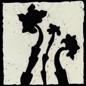 Profile VI by Andrea Davis