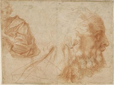A Youth and the Head of an Old Man (Homer) Study, Ca 1521
