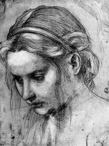 Face of a Woman with Ruffled Hair, Looking Down by Andrea del Sarto