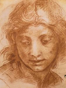Head of a Young Woman, Drawing by Andrea Del Sarto, Uffizi Gallery, Florence by Andrea del Sarto