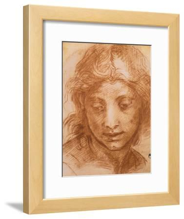 Head of a Young Woman, Drawing by Andrea Del Sarto, Uffizi Gallery, Florence