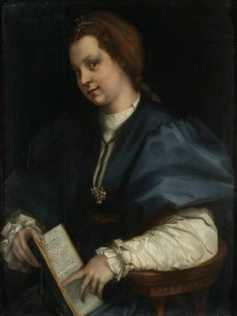 Lady with Book of Verse by Petrarch, c.1515-25