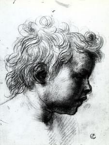Portrait of a Child Seen in Profile, Gabinetto Dei Disegni E Delle Stampe, Uffizi Gallery, Florence by Andrea del Sarto