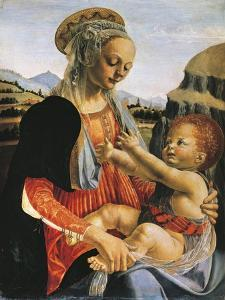Madonna and Child, Circa 1470 by Andrea del Verrocchio