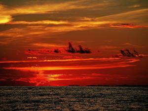 Tropical Sunset over the Sabah Coastline by Andrea Ferrari