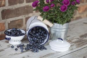 Blueberrys in Enamel Milk Can by Andrea Haase