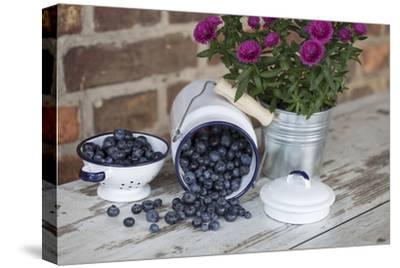 Blueberrys in Enamel Milk Can