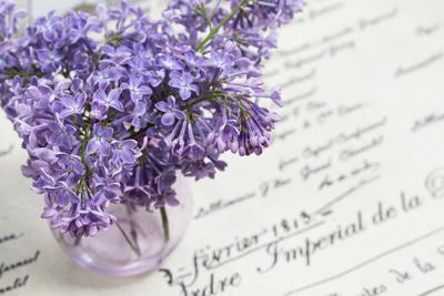 Bouquet, Lilac, Flowers, Purple, Violet, Vase, Spring