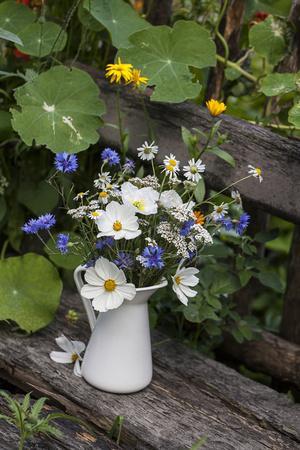 Bouquet, Summer Flowers, Bank