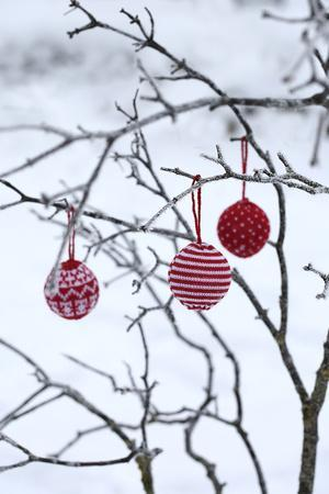 Branch in Winter with Christmas Bulbs, Cord Sample