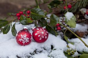 Christmas Decoration, Still Life by Andrea Haase