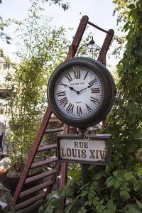 Flea market in L'Isle-sur-la-Sorgue, an antique village in Provence, France by Andrea Haase