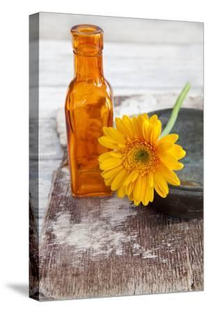 Gerbera, Flower, Orange, Glass Bottle