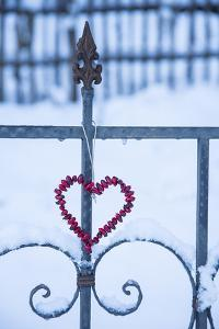 Heart on the Fence and Snow by Andrea Haase