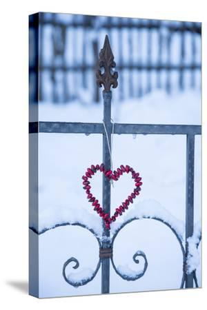 Heart on the Fence and Snow