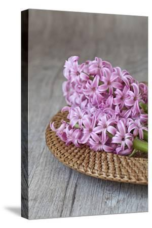 Hyacinth Blossoms in a Basket