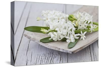 Hyacinths, White, Spring Flowers, Blossoms, Wooden Bowl