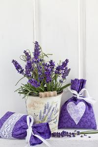 Lavender, Blossoms, Fragrance Sachets, Flowerpot by Andrea Haase