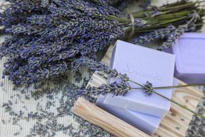 Lavender Blossoms, Lavender Soap, French by Andrea Haase