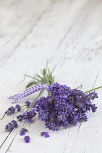 Lavender, Blossoms, Smell, Bunch, Wood by Andrea Haase