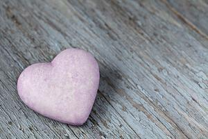 Purple Heart on Wood by Andrea Haase