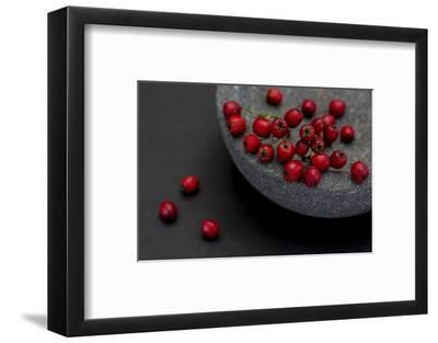 Still Life, Berries, Red, Bowl, Grey, Black, Still Life