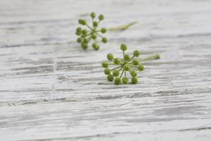 Still Life, EfeublŸten, Green, Wood, White by Andrea Haase