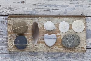Still Life, Pebble Stones, Heart, Seashell, Feather by Andrea Haase